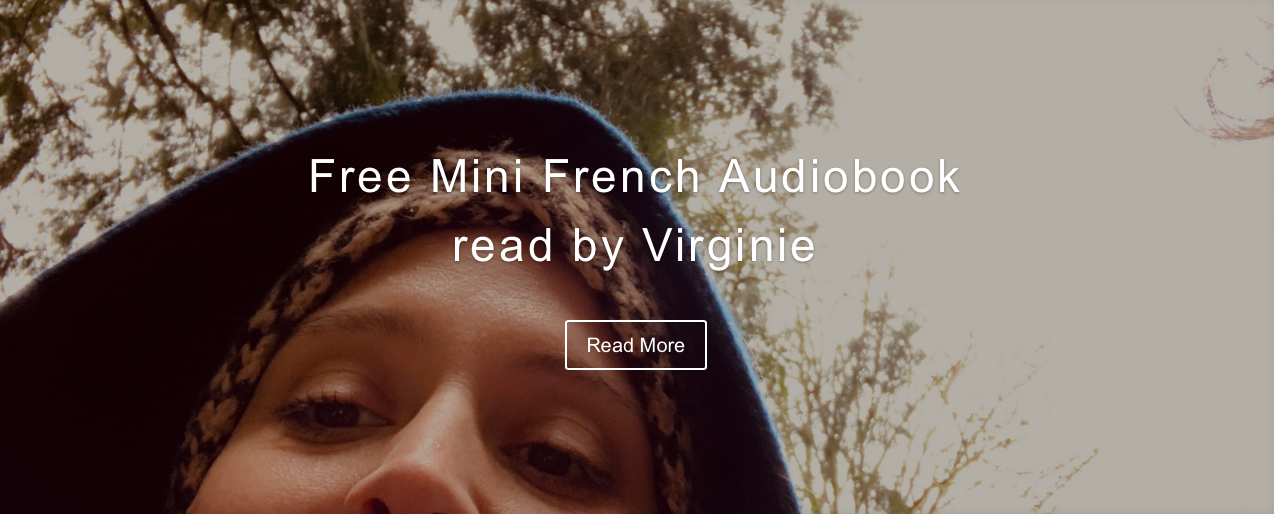French audiobook